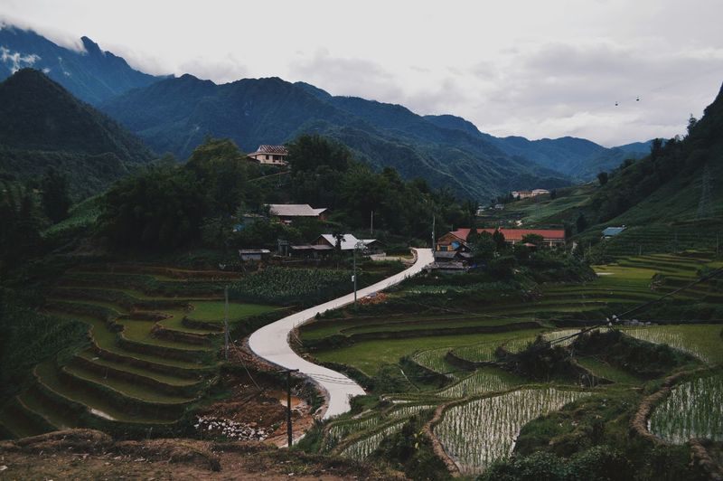 Trail Mountain Hiking Adventures Hiking FROM THE ABOVE Landscape Greenery Aerial View Outdoors Nature Tree Rural Scene Path In Nature Pathways Cat Cat Vilage Sapa Vietnam EyeEmNewHere