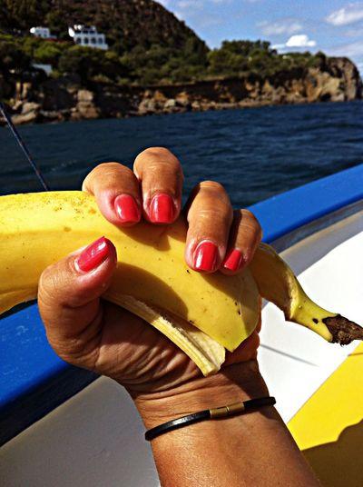 Enjoying The Sun Going Sailing Fresh Air Relaxing