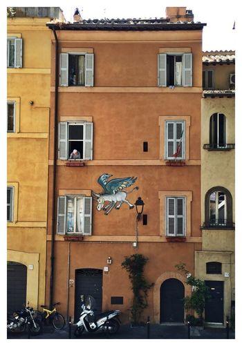 Murale Roma L'asino Che Vola