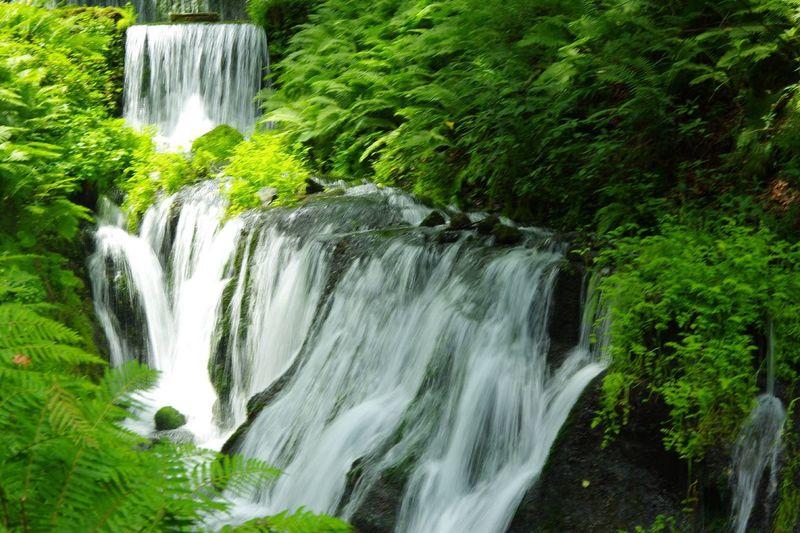 軽井沢白糸の滝の手前にある小さな滝。名前はあるのかな? Waterfall Water Pentax K-3 滝