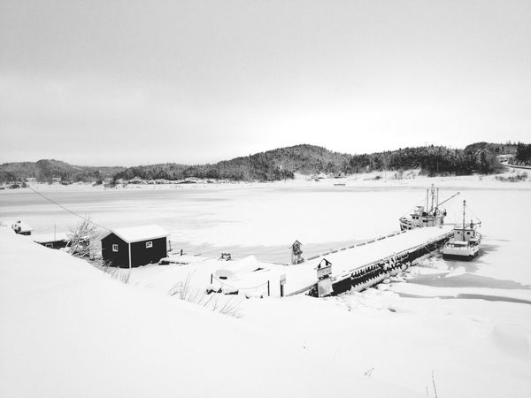 Winter White - iPhone 4S Winter White By CanvasPop Don Filter Landscape_Collection Blackandwhite