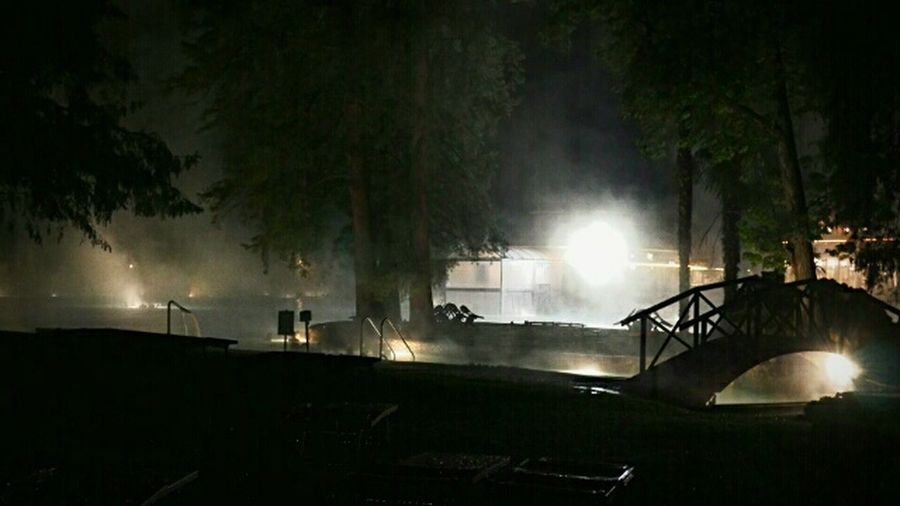 Night Water Tree Outdoors Illuminated No People Nature