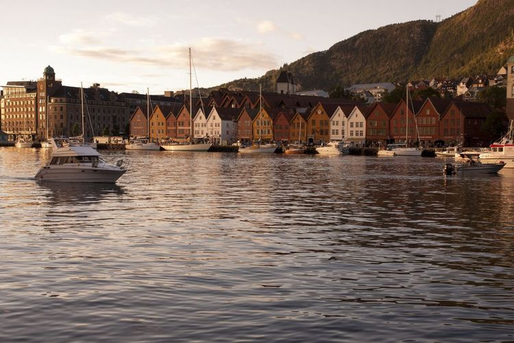 Boats in harbor with buildings in background