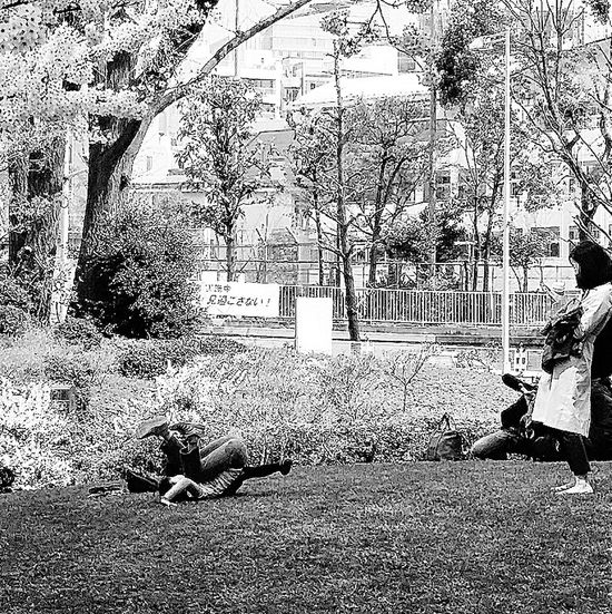 Girl Child Having Fun Somersault  Mori Gardens Spring 2015 Tokyo Japan Travel Photography