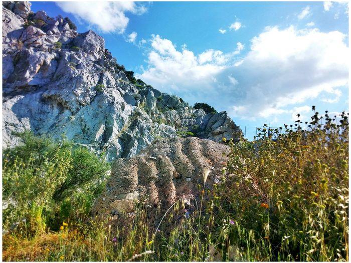 Greece Salamina Rocks Sky Flowers Nature Showcase April