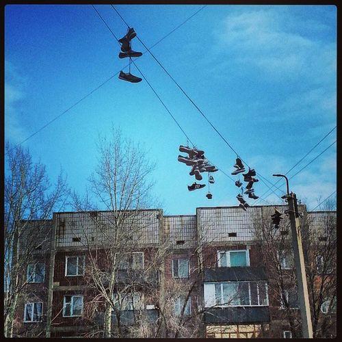 утро улыбнуло) всегда было интересно зачем кроссовки нужно туда забрасывать)) смешно двор прогулка кеды