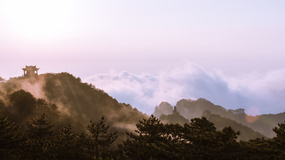 HighMountains Huangshan Natural Scenery Outdoors Overlook Pine Tree Seas Of Clouds Vast The Great Outdoors - 2017 EyeEm Awards