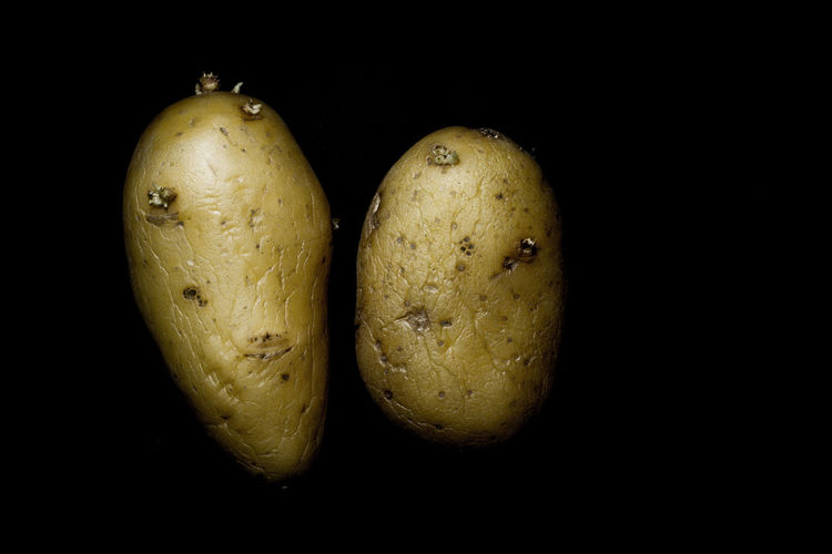 P Root Patate