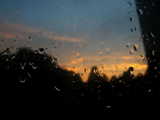 First Eyeem Photo After The Rain Silhouettes Summer Nofilter#noedit Nature Photography Sunshine Contry Living