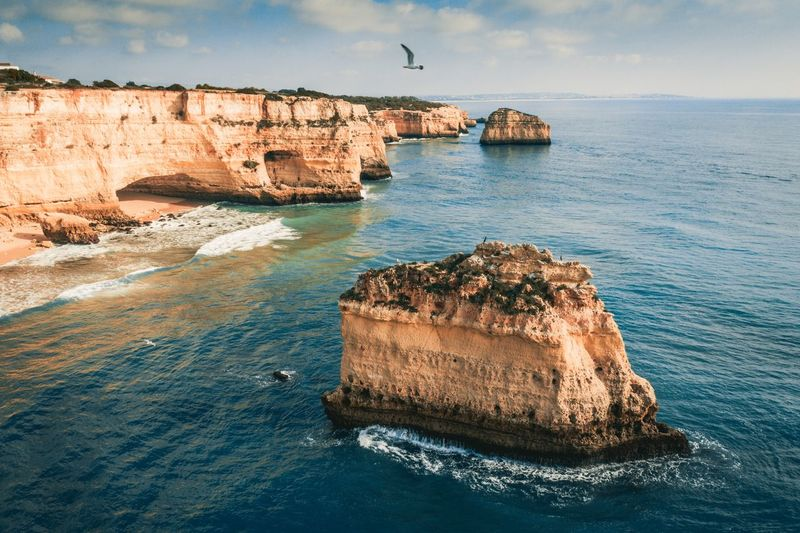 The seagull and the sea Portugal Algarve Seagull Sea Water Rock Rock - Object Solid Rock Formation Land Sky Beauty In Nature Cloud - Sky Nature Scenics - Nature Tranquility Beach Day No People Tranquil Scene Cliff