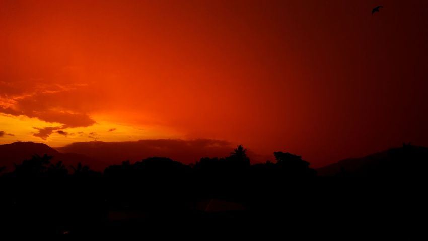 Sunset Outdoors Silhouette Nature Sky North Queensland Fnq Dusk Scenics