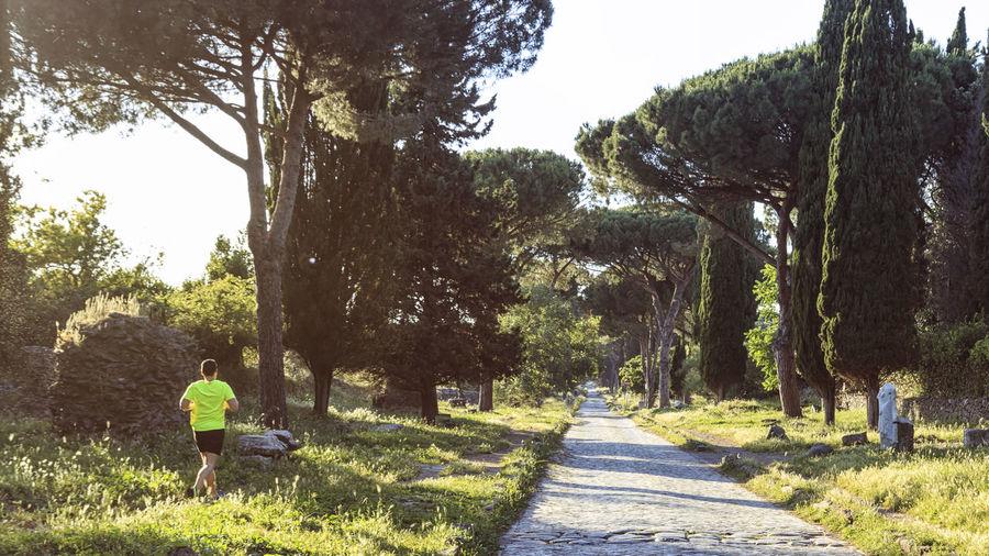 Man running over the ruins of the ancient Via Appia (Appian Way) in Rome Appian Way Coliseum Quirinale Rome Via Appia Antica Viminale Europe Fori Romani Italy Trevi