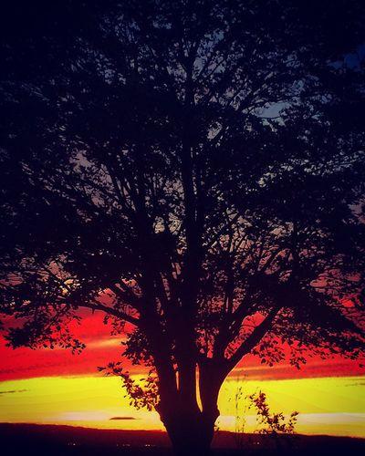 Amazing sunset EyeEmNewHere