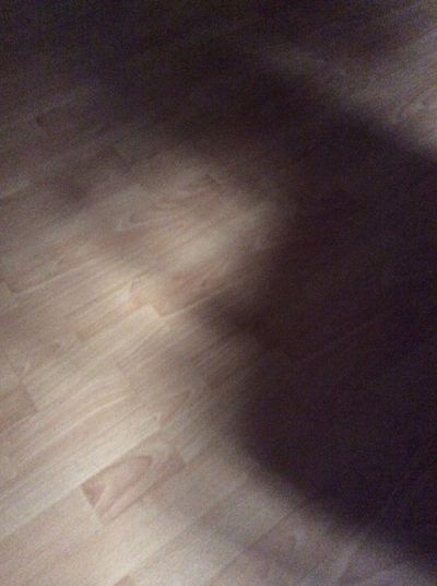 Shadow Randomness Idk ._.  #chair