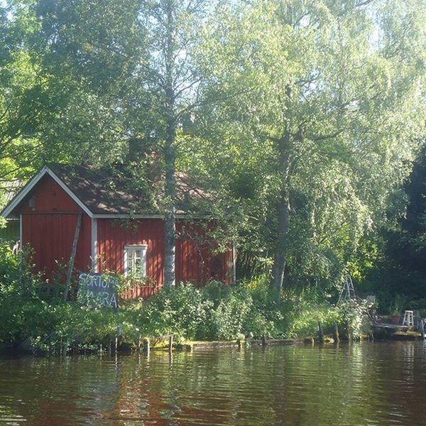 Hämeenkyrö Frantsila Pappilanjoki Visithämeenkyrö Visitfinland Red River Trees Nature Punainen Joki Puut Luonto Beautiful Kaunis Summer Kesä