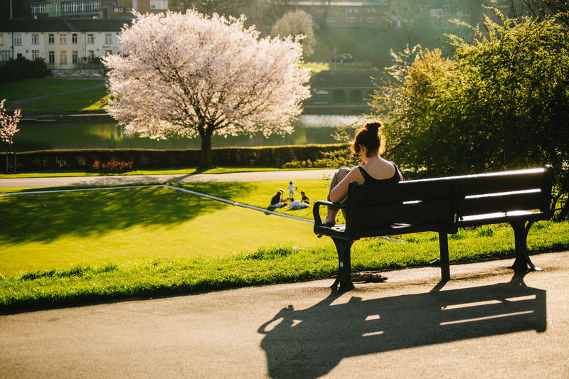 Rear View Of Woman Sitting On Bench At Park During Autumn