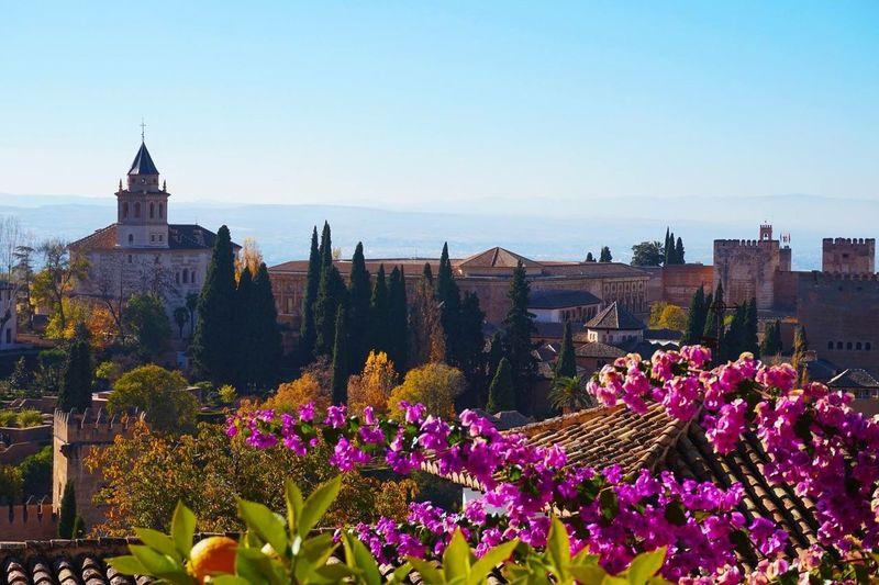 SPAIN Granada Alhambra Landscape Flowers Sun Colors