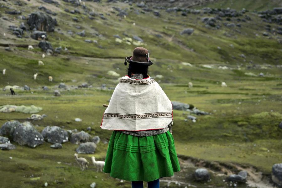 Peruvian quechua woman with her alpacas in Peruvian highlands Alpaca Hat Kichwa Nature Peru Aymara Aymara Woman Day Indigenas Indigenous  Indigenous Culture Indigenous People Landscape Nature One Person Outdoors People Peruvian Peruvian Culture Quechua Real People Sky South America Standing Women Fresh On Market 2017