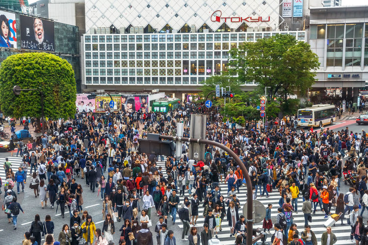 Tokyo, Japan: aerial view from Occitane Cafe of unidentified pedestrians in Shibuya Crossing, one of the busiest crosswalks in the world.Shibuya Crossing a popular attraction in Tokyo City Crosswalk Japan Japanese  Japanese Culture Road Shibuya Shibuya Crossing Shibuya Tokyo Tokyo Tokyo Street Photography Tokyo,Japan Traffic Traffic Jam Aerial View Architecture Building Exterior Built Structure City City Life Crosswalks Crowd Day Group Of People Large Group Of People Men Mode Of Transportation Office Building Exterior Outdoors Pedestrians Pedestrians Walking People Plant Popular Photos Real People Road Shibuya Station Street Transportation Tree Women