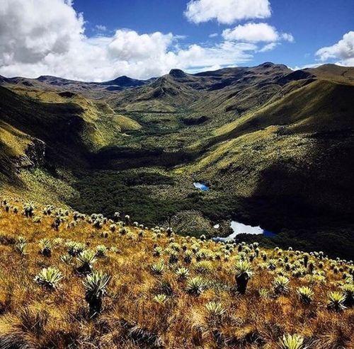 Landscape Cloud - Sky Outdoors Beauty In Nature Nature Mountain Scenics No People Nature Reserve Day Entrevolcanes🇪🇨 Ecuador Potencia Turística Fincaruiseńor 🇪🇨 Tranquility Volcano Ecuador #playas Petal
