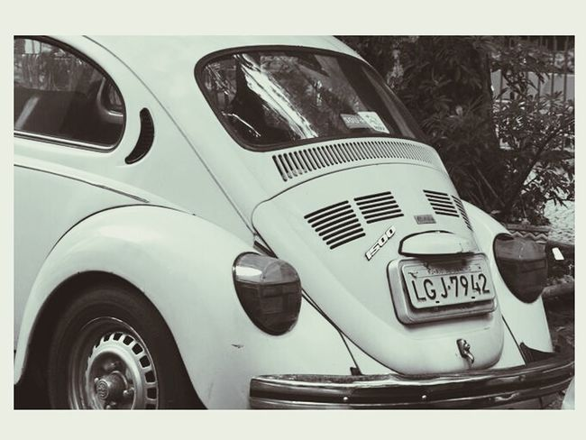 Beetle Beetle Clasic Beetle Collection Old Beetle Vintage Cars Car Black And White Monochrome
