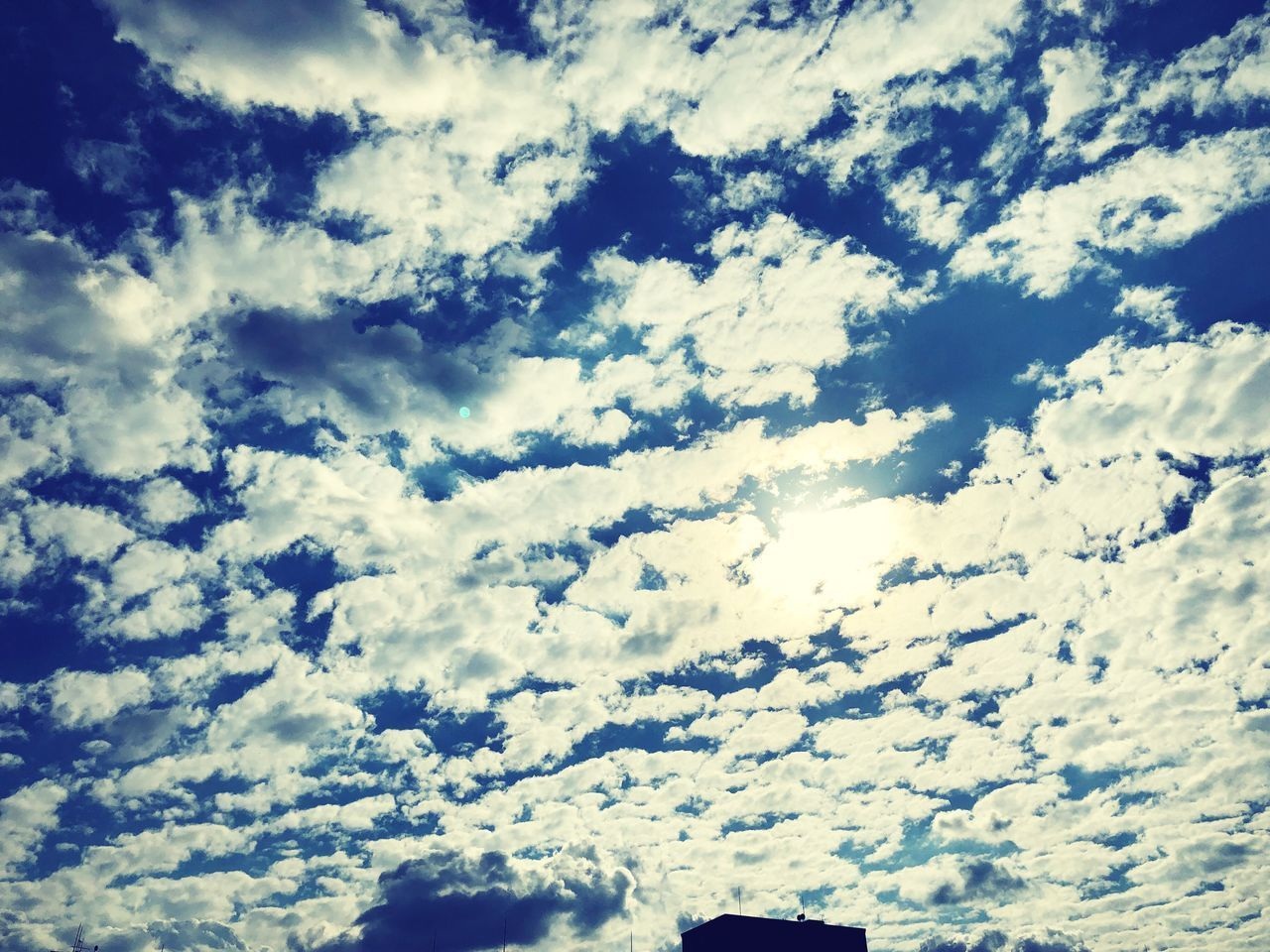 cloud - sky, sky, beauty in nature, low angle view, scenics - nature, tranquility, nature, no people, tranquil scene, day, backgrounds, outdoors, full frame, idyllic, cloudscape, white color, non-urban scene, blue, sunlight, meteorology, height
