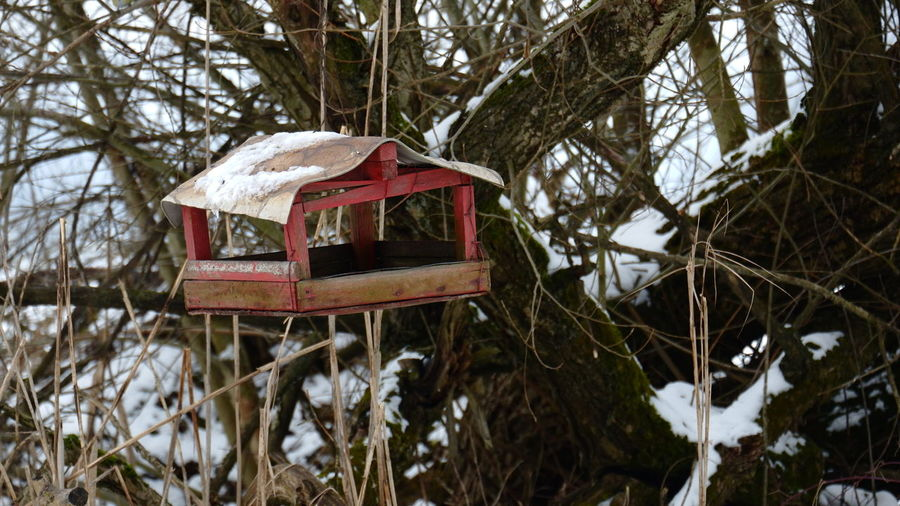 Close-up of birdhouse on snow covered land