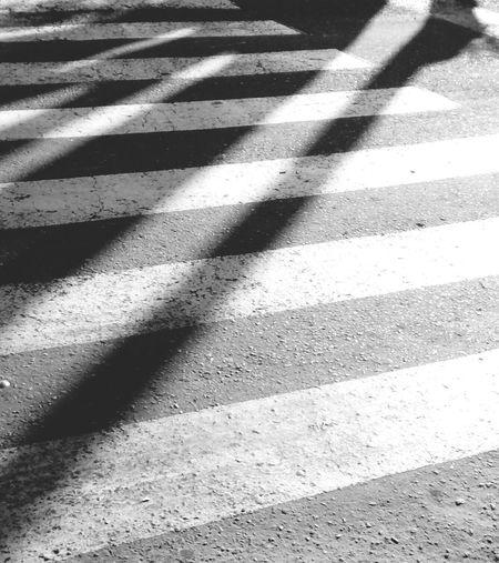 Zebra Zebra Crossing Zebra Aplastada Composition Creativity Artistic Photography Global Photographer Works Exhibition Colombia Musical Academia Mobilephotography Arte En Foco Eye4photography  Conceptual Photography  Texturas Y Colores Almas Gemelas White And Black Blackandwhite Blanco Y Negro Animals