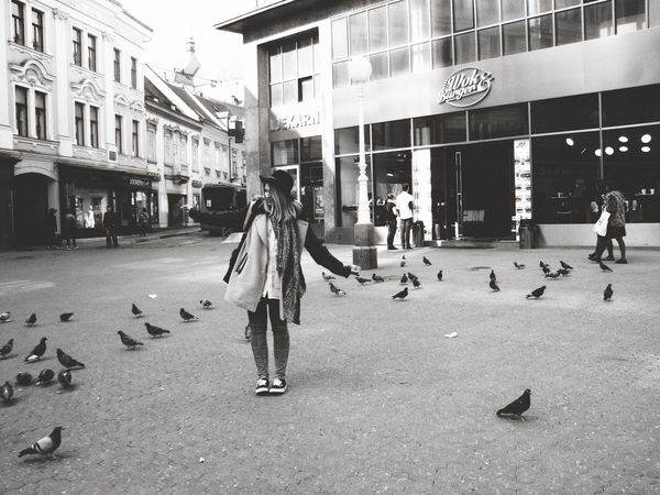 Architecture Birds Building Exterior Buildings City City Life Day Girl Outdoors Pidgeons Square Street Zagreb