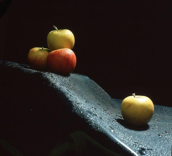 Black Background Close-up Dark Freshness Fruit Multi Colored No People Shore Summer Vibrant Color