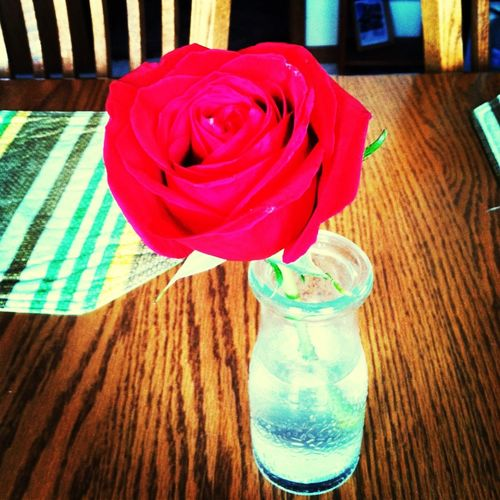 ~I'll Love You Until The Last Rose Dies~