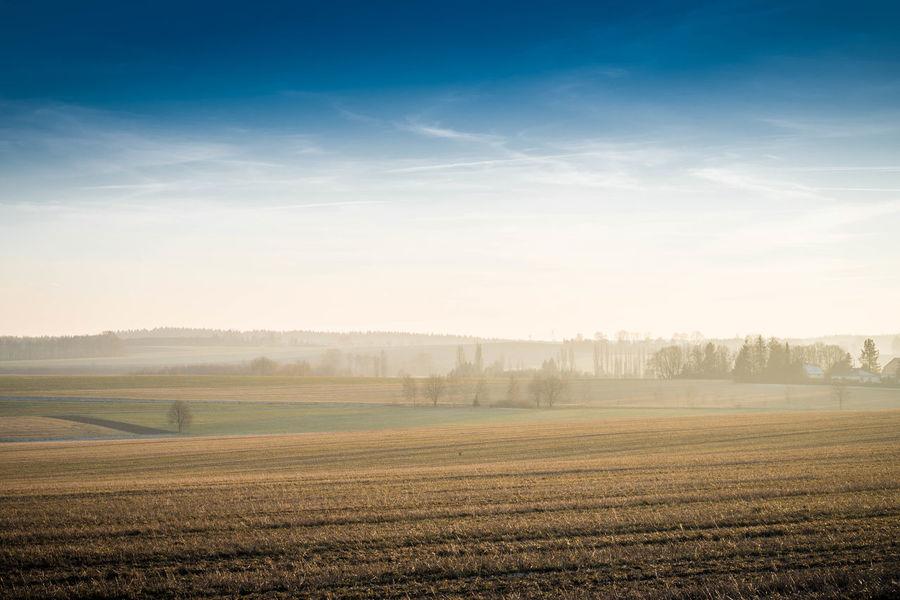 Nebel und blauer Himmel über einem Feld in Sachsen Blue Sky Copyspace Day Field Fog Horizont  Idyllic Landscape Nature No People Outdoors Reise Sky Tranquil Scene Tranquility