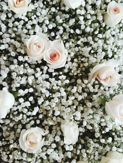 Babysbreath Flowers Flowerporn Roses Elegant Abundance Of Flowers Fresh Scent Beautiful Wedding Day Weddings