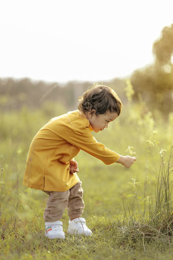 Side View Of Boy Picking Flowers On Field
