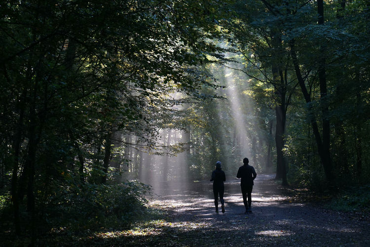 Silhouette Couple Jogging In Forest