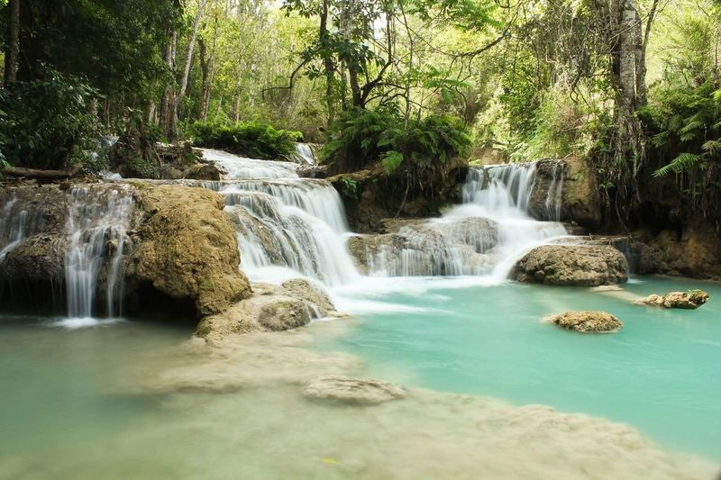 Waterfall Waterfall Water Nature Beauty In Nature Scenics Forest Tranquil Scene Tree Tranquility No People Motion Outdoors Day