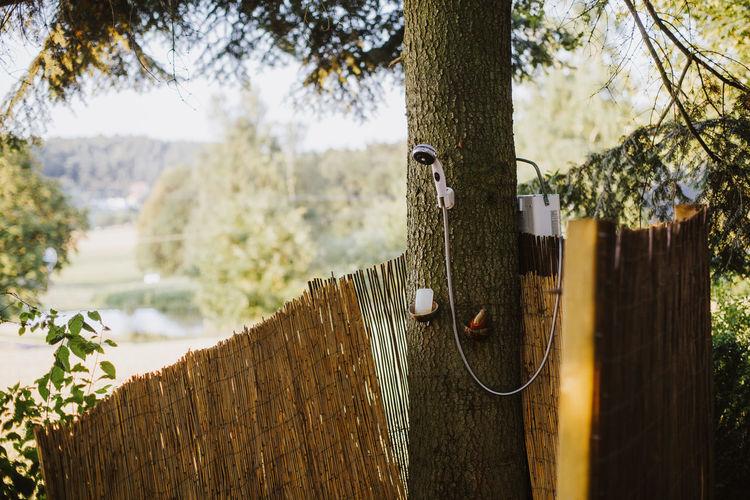 Shower On Tree