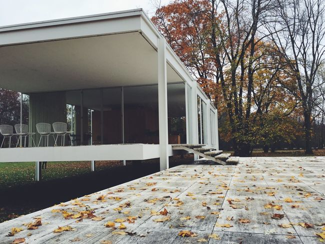 Farnsworth House Mies Van Der Rohe Museum Fall Nature Architecture