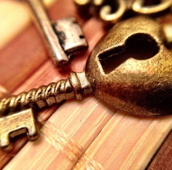 """The key to unlock the """"skeletons"""" in your closet Skeleton Key  Macro Photography"""