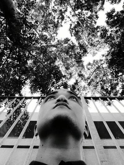 Never look down! Lookingforward NeverLookBack Neverlookdown Blackandwhite Talltrees Deep Thoughts Relaxing