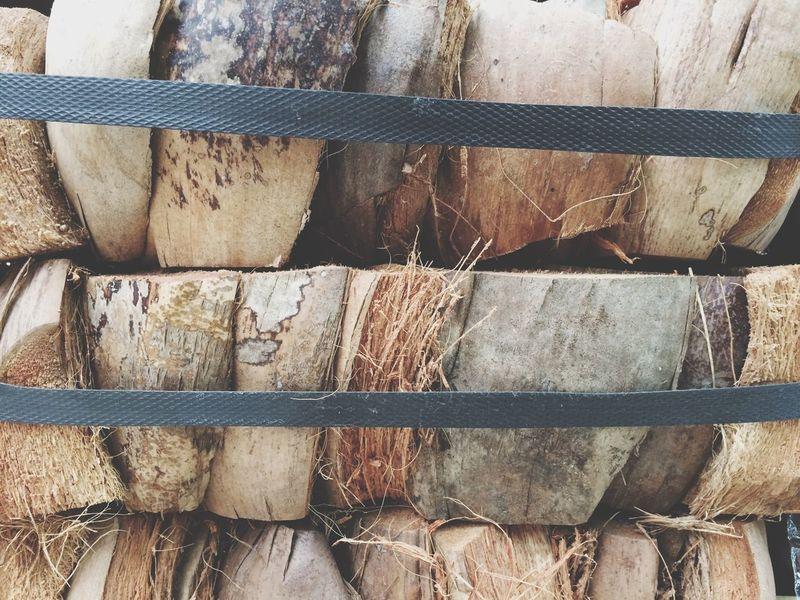 Coconut Shells Coconut Plam Full Frame Large Group Of Objects Wood - Material No People Arrangement Backgrounds Day Close-up Outdoors