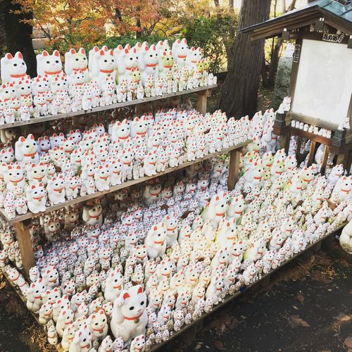 Cat Cats Of EyeEm Fortunecat Outdoors Temple Power In Nature Power Spot Lucky Cat Japan Japanese Culture