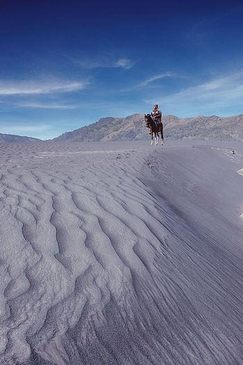 Whispering Sands Bromo Mountain Nature Horse Day People Adult Mammal Only Men One Person Domestic Animals Outdoors Blue Riding Arid Climate One Animal Animal Themes Sand Dune Sand Sky Scenics Bromo Mountain Indonesia The Week On EyeEm