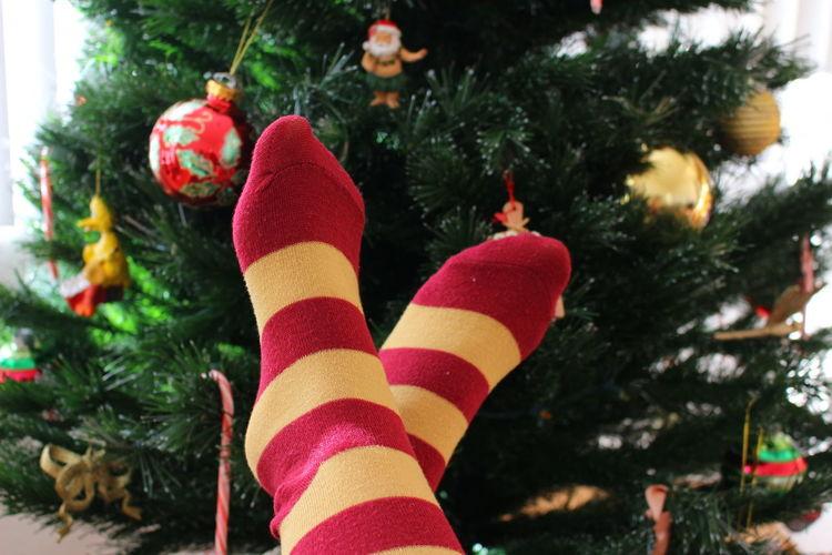 Christmas Christmas Decoration Christmas Tree Holiday - Event Indoors  Ornaments Socks TK Maxx Socksie