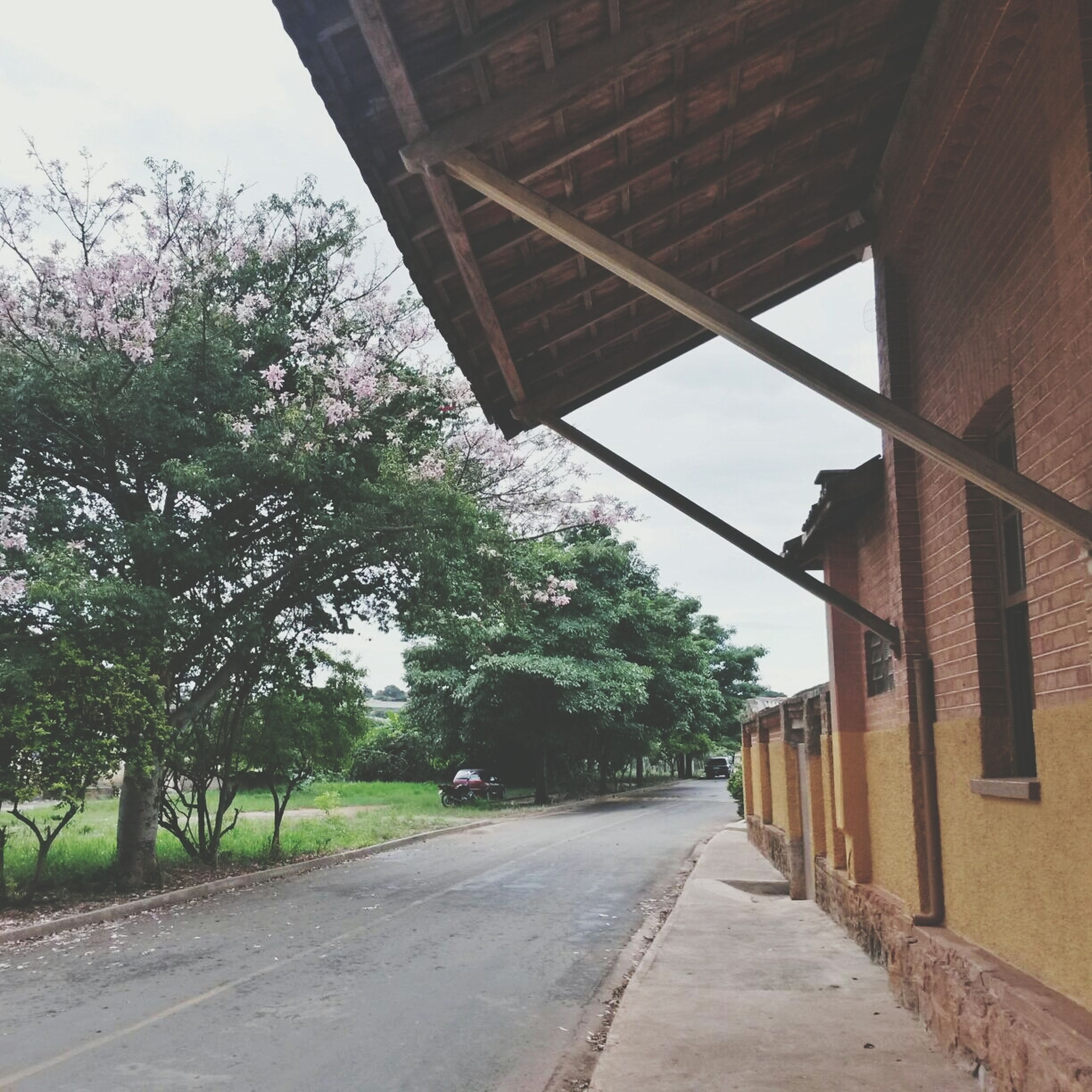 architecture, built structure, building exterior, the way forward, road, tree, street, transportation, diminishing perspective, sky, house, vanishing point, building, day, empty road, empty, outdoors, no people, wall - building feature, residential structure