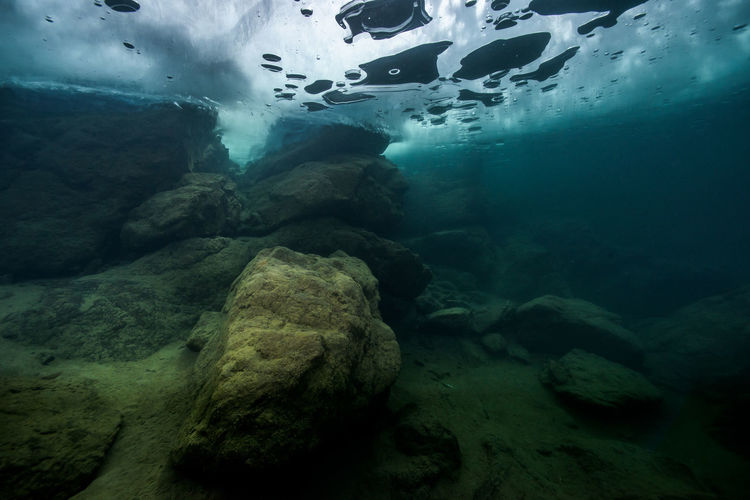 Scenic view of rock underwater