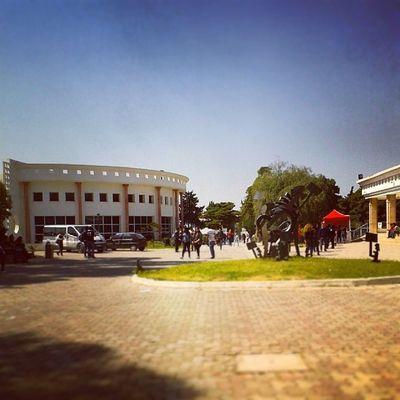 Idreamoftunisia InstagramTunisie Instagramtn Ihec Carthage Tunisia university