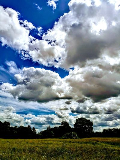 Cloud - Sky Norwich Catton Park Beauty In Nature