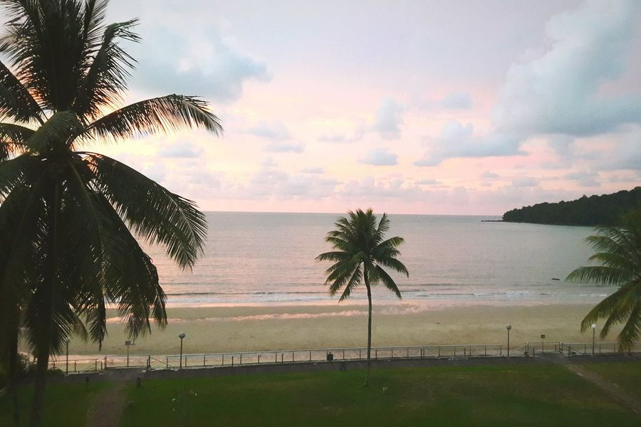 Palms & pink. Palm Tree Sunset Sea Tree Sky Landscape Beach Water Nature Scenics Outdoors No People Borneo Island Beauty In Nature Coconut Trees And Beaches Borneo Pink Skies EyeEmNewHere Blue Sky And Clouds Leisure Time Aesthetics Cloud - Sky Shades Of Nature Shades Of Sky