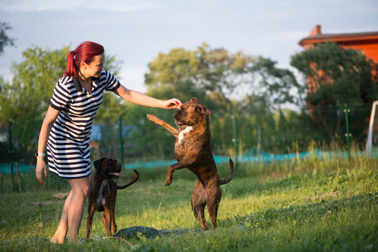 Mid adult woman playing with dogs while standing on grassy field against sky at park